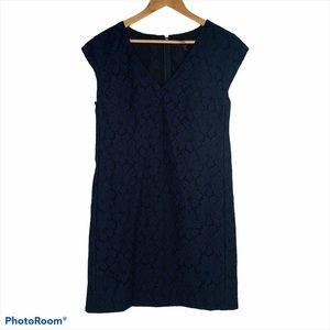J Crew Navy Lace Cap Sleeve Shift Dress Size 10